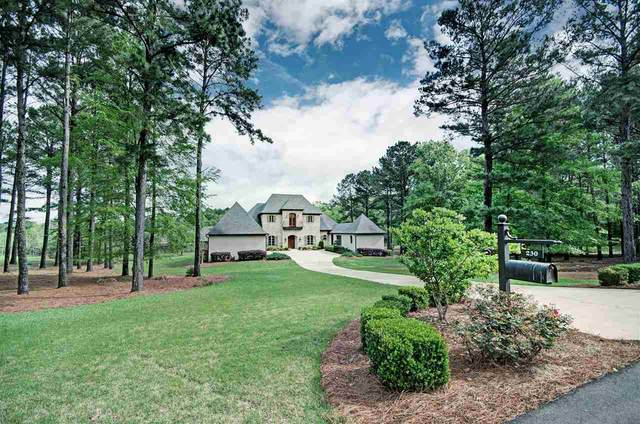 230 Johnstone Dr, Madison, MS 39110 (MLS #329601) :: RE/MAX Alliance