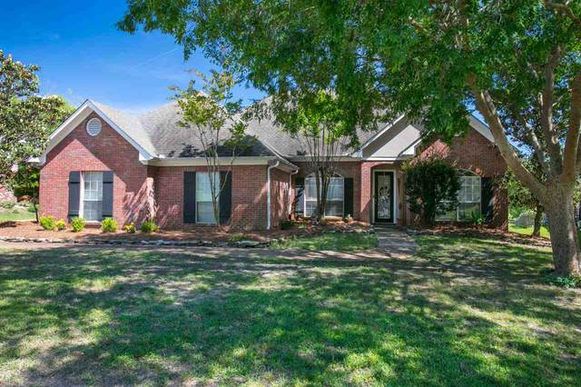 228 Greensview Dr, Brandon, MS 39047 (MLS #330235) :: List For Less MS
