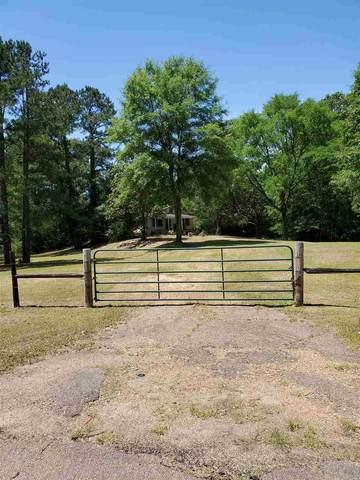 6581 Spring Ridge Rd #01, Byram, MS 39272 (MLS #330407) :: Three Rivers Real Estate