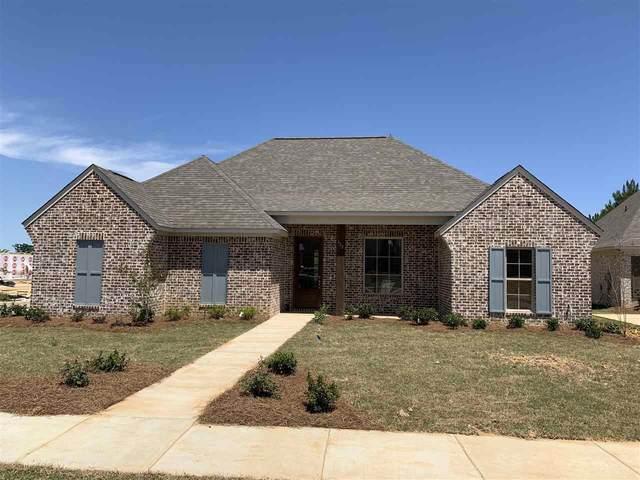 322 Buttonwood Lane, Canton, MS 39046 (MLS #330412) :: Three Rivers Real Estate