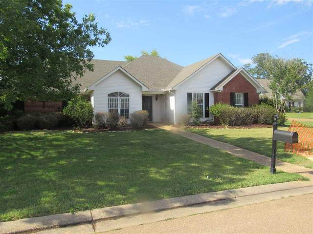 515 Wildberry Dr, Pearl, MS 39208 (MLS #330502) :: RE/MAX Alliance