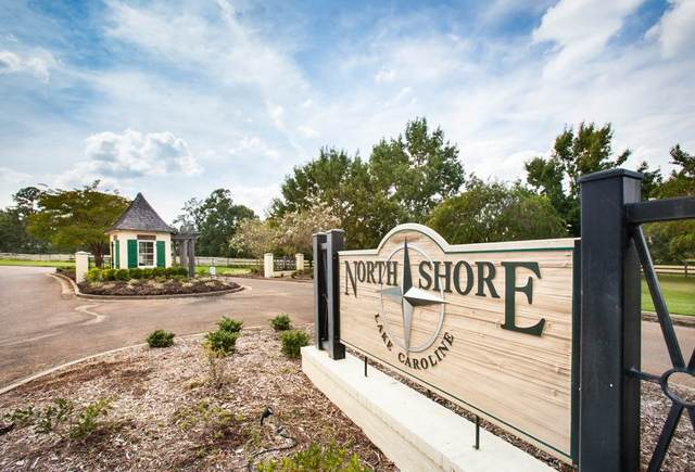 135 Northshore Way #115, Madison, MS 39110 (MLS #330702) :: Three Rivers Real Estate