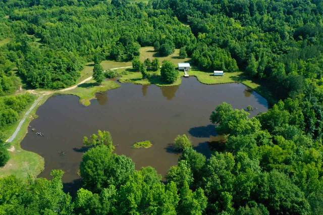 271 Petros Rd, Pearl, MS 39208 (MLS #330779) :: List For Less MS