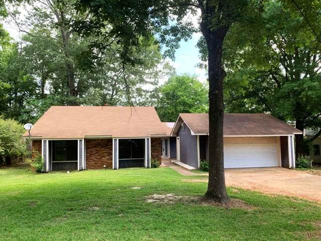 202 Dublin Ct, Brandon, MS 39047 (MLS #330817) :: List For Less MS