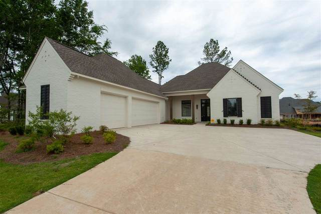 116 Forestview Place, Madison, MS 39110 (MLS #330915) :: Three Rivers Real Estate