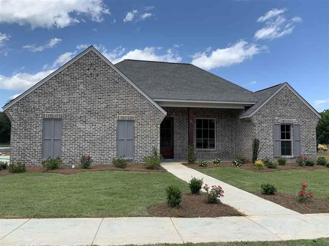 283 Buttonwood Lane, Canton, MS 39046 (MLS #330983) :: Three Rivers Real Estate