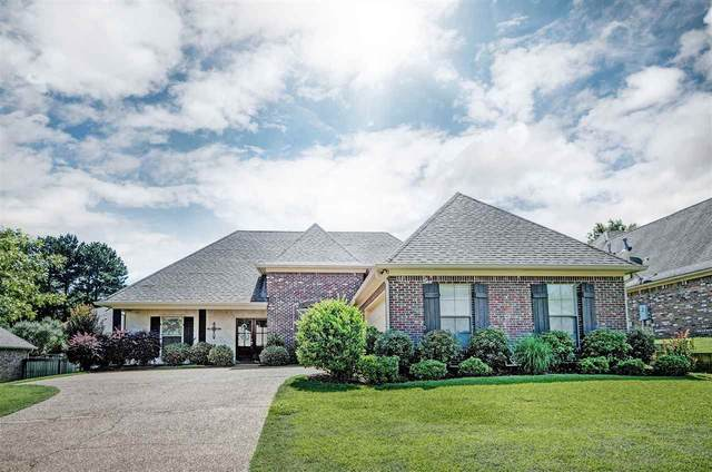 136 Brierfield Dr, Madison, MS 39110 (MLS #331058) :: RE/MAX Alliance