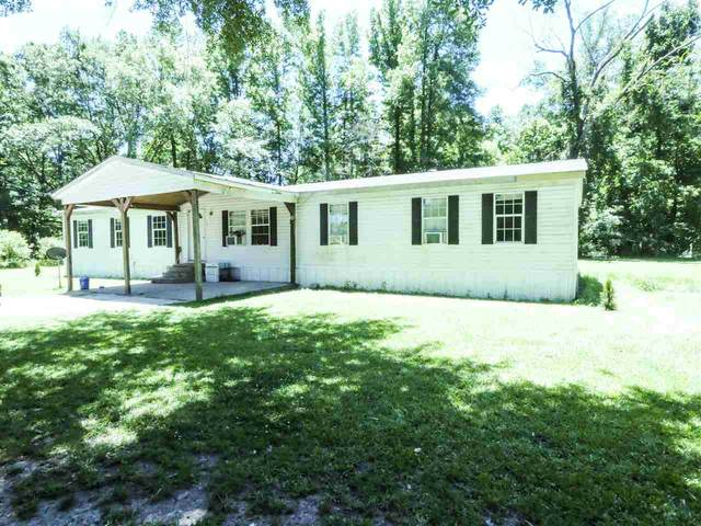 1200 Katie Cliff Dr, Raymond, MS 39154 (MLS #331098) :: RE/MAX Alliance