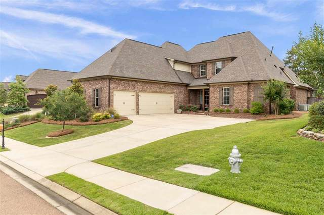 370 Summerville Dr, Madison, MS 39110 (MLS #331172) :: Three Rivers Real Estate