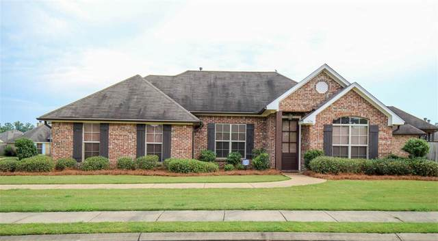 426 Springhill Pte, Brandon, MS 39047 (MLS #331224) :: RE/MAX Alliance