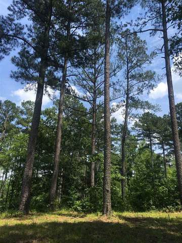 Truitt Rd, Pickens, MS 39146 (MLS #331228) :: Three Rivers Real Estate