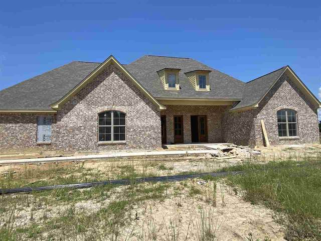 118 Anchor Ln, Brandon, MS 39047 (MLS #331320) :: Three Rivers Real Estate