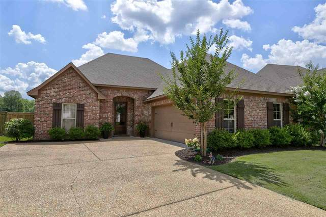 188 Provonce Park, Brandon, MS 39042 (MLS #331331) :: Exit Southern Realty