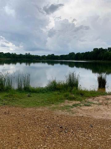 2055 Wilson Rd #0, Pearl, MS 39208 (MLS #331695) :: Mississippi United Realty