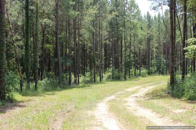 560 Mt Helm Rd #1, Brandon, MS 39047 (MLS #331843) :: RE/MAX Alliance