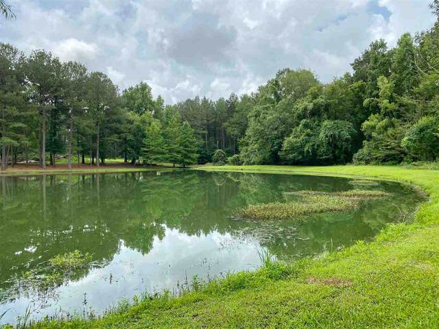 Lakeshire Trail #104, Canton, MS 39045 (MLS #332166) :: RE/MAX Alliance
