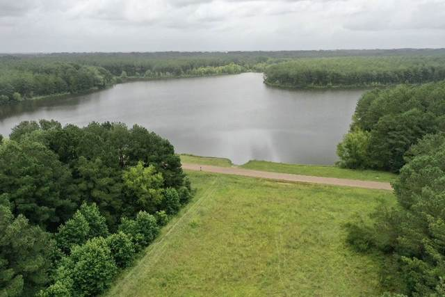 Lakeshire Pkwy #100, Canton, MS 39046 (MLS #332178) :: RE/MAX Alliance