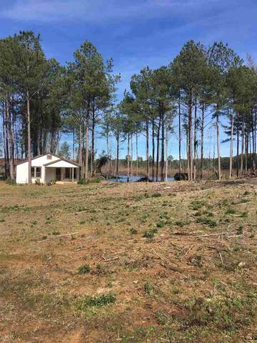 3089 Pleasant Grove Rd, Carthage, MS 39051 (MLS #332435) :: Mississippi United Realty