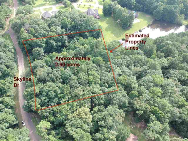 0 Skyline Dr #0, Clinton, MS 39056 (MLS #332615) :: Mississippi United Realty