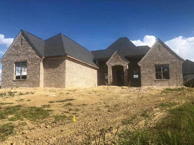 501 Wales Way, Brandon, MS 39232 (MLS #332786) :: Exit Southern Realty