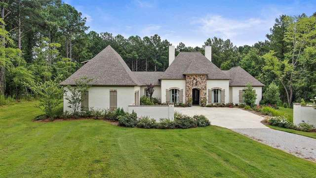 174 Clarkdell Rd, Madison, MS 39110 (MLS #333248) :: eXp Realty
