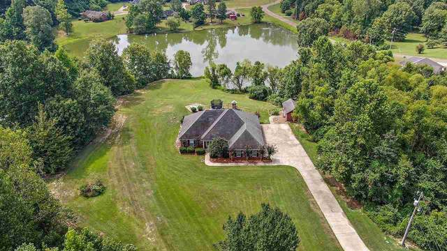 202 Springridge Pl, Yazoo City, MS 39194 (MLS #333351) :: Exit Southern Realty