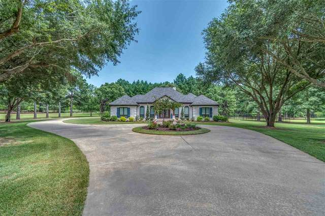 433 Cherry Hill Dr, Madison, MS 39110 (MLS #333356) :: Exit Southern Realty