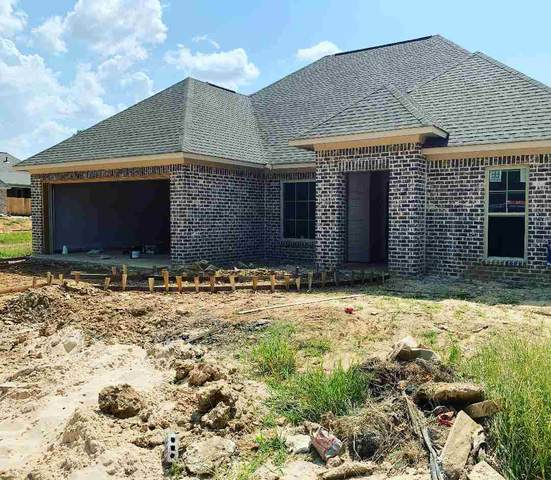 295 Buttonwood Lane, Canton, MS 39046 (MLS #333412) :: RE/MAX Alliance