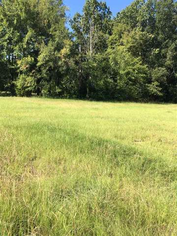 000 Greenview St, Richland, MS 39218 (MLS #333540) :: eXp Realty