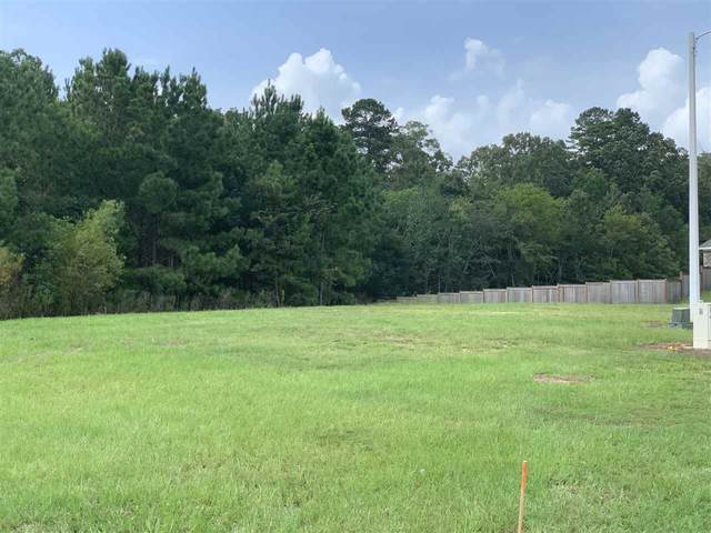 Asbury Lane Dr #176, Pearl, MS 39208 (MLS #334015) :: Mississippi United Realty