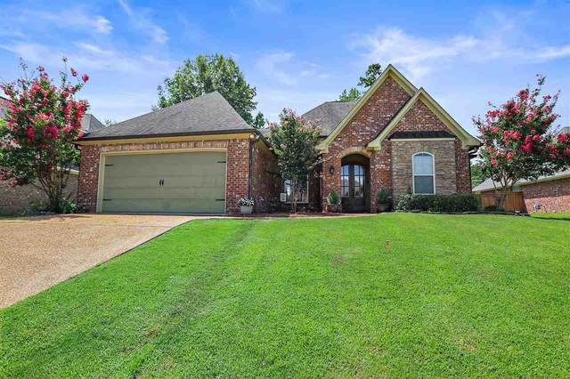 152 Willow Crest Cir, Brandon, MS 39047 (MLS #334131) :: RE/MAX Alliance