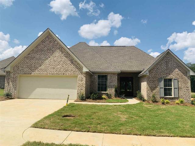 289 Buttonwood Lane, Canton, MS 39046 (MLS #334196) :: RE/MAX Alliance
