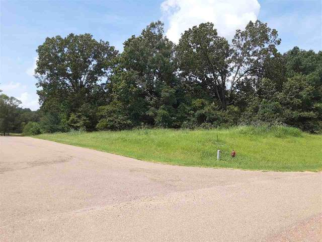Moonlight Hollow #87, Flora, MS 39071 (MLS #334549) :: List For Less MS