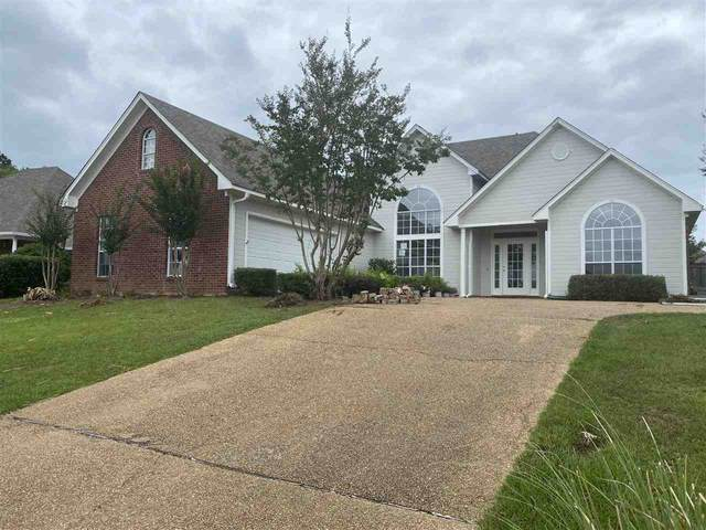 546 Eastside Cv, Brandon, MS 39047 (MLS #334574) :: RE/MAX Alliance