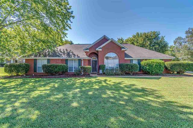 101 Concord Pl, Madison, MS 39110 (MLS #334840) :: Exit Southern Realty