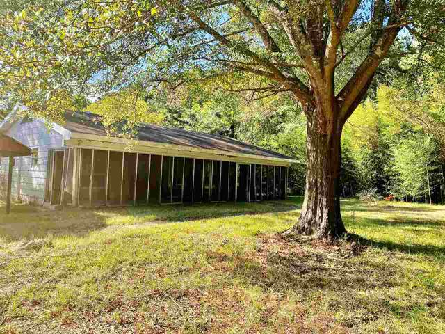 283 Craig Rd, Lena, MS 39094 (MLS #334855) :: Exit Southern Realty