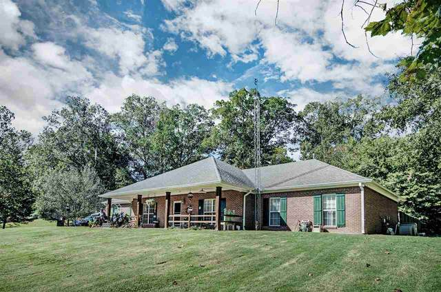 129 Lakeview Dr, Yazoo City, MS 39194 (MLS #335063) :: RE/MAX Alliance