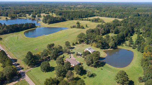 708 Ratliff Ferry Rd, Canton, MS 39046 (MLS #335077) :: eXp Realty