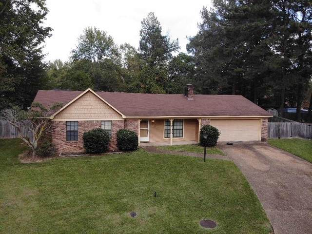 16 Christopher Ct, Jackson, MS 39212 (MLS #335339) :: RE/MAX Alliance