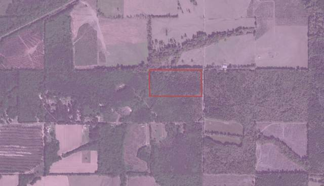 000 Gore Rd, Lena, MS 39094 (MLS #335499) :: RE/MAX Alliance