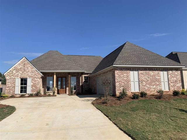 233 Dunbar Trl, Canton, MS 39046 (MLS #335505) :: Mississippi United Realty