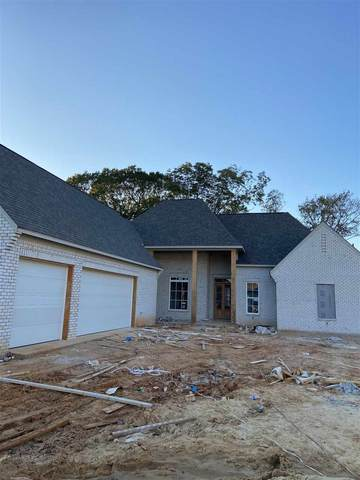 322 Colony Ct, Madison, MS 39110 (MLS #335569) :: List For Less MS