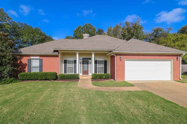 520 Patrick Farms Dr, Pearl, MS 39208 (MLS #335631) :: List For Less MS