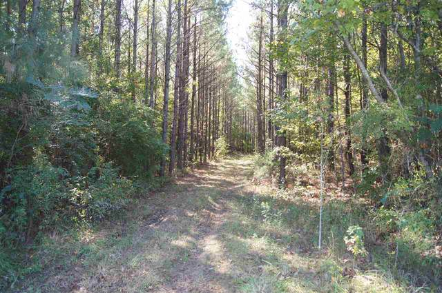 Whiddon Rd, Canton, MS 39046 (MLS #335662) :: RE/MAX Alliance