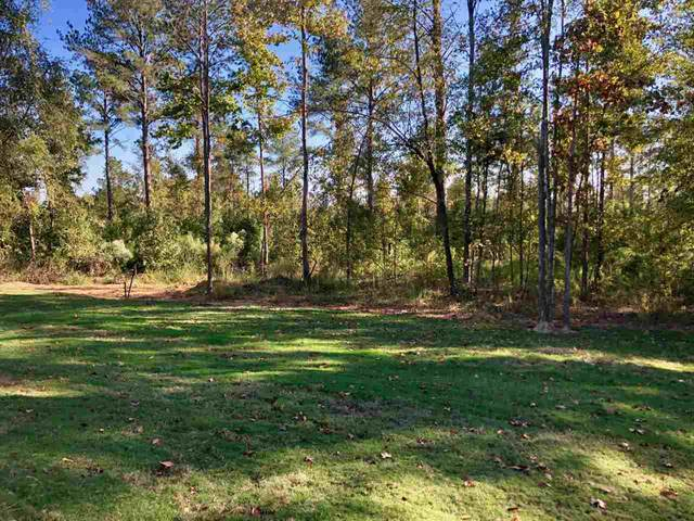 115 St Croix Ln, Madison, MS 39110 (MLS #335941) :: eXp Realty