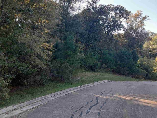 Lot# 31 Chestnut Hill Rd #31, Flora, MS 39071 (MLS #336064) :: RE/MAX Alliance