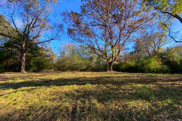 0 Star Rd, Florence, MS 39073 (MLS #336126) :: List For Less MS
