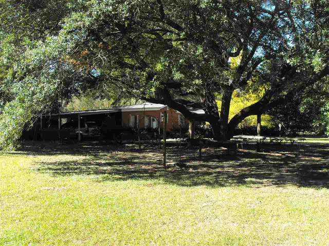 733 N Church St, Florence, MS 39073 (MLS #336230) :: eXp Realty