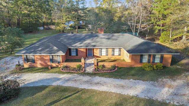 144 Thomasville Rd, Florence, MS 39073 (MLS #336245) :: RE/MAX Alliance