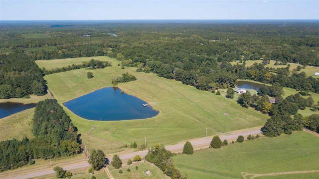 706 Ratliff Ferry Rd, Canton, MS 39046 (MLS #336307) :: List For Less MS